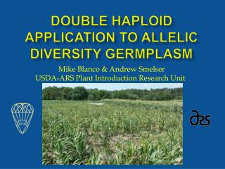 double haploid application to allelic diversity germplasm