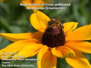 susan stieve seed crop curator ornamental plant germplasm center the ohio state university