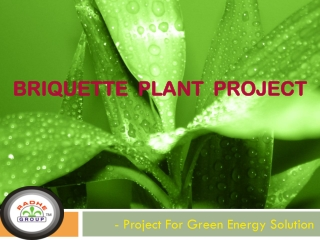Briquette Plant Project - Project For Green Energy Solution