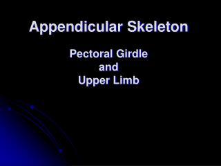 Appendicular Skeleton  Pectoral Girdle and Upper Limb