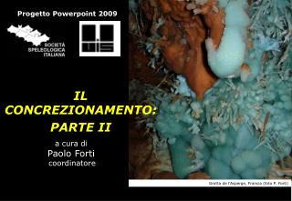 A cura di  Paolo Forti  coordinatore