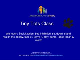 Tiny Tots Class