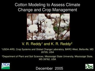 Cotton Modeling to Assess Climate Change and Crop Management