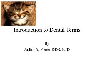 Introduction to Dental Terms