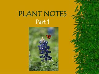 PLANT NOTES  Part 1