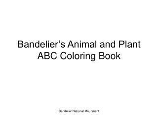 Bandelier s Animal and Plant ABC Coloring Book