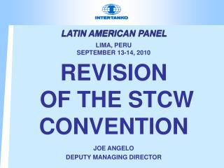 LATIN AMERICAN PANEL   LIMA, PERU SEPTEMBER 13-14, 2010
