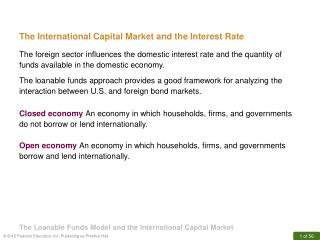 The International Capital Market and the Interest Rate