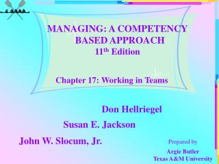 Chapter 17: Working in Teams