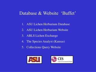 Database  Website   Buffet