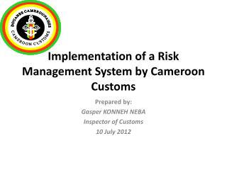 Implementation of a Risk Management System by Cameroon Customs