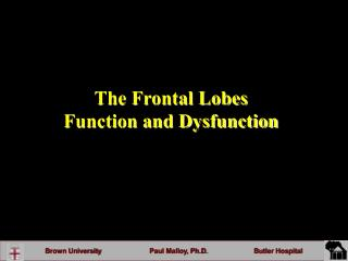 The Frontal Lobes  Function and Dysfunction