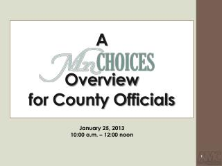 A                   Overview for County Officials