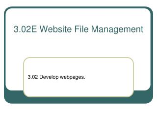 3.02E Website File Management