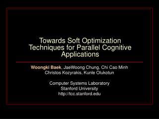 Towards Soft Optimization Techniques for Parallel Cognitive Applications