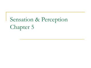 Sensation  Perception Chapter 5
