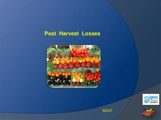 Post  Harvest  Losses