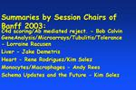 Summaries by Session Chairs of Banff 2003: