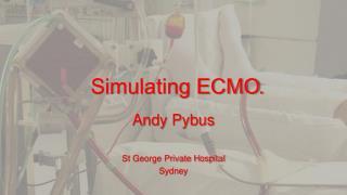 Simulating ECMO.
