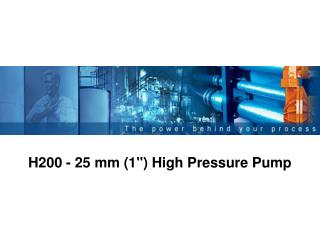 H200 - 25 mm 1 High Pressure Pump