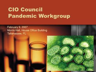 CIO Council  Pandemic Workgroup