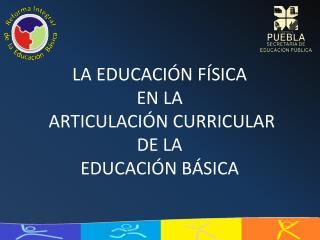 La educaci n f sica  en la  articulaci n CURRICULAR DE LA  EDUCACI N b sica