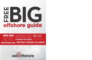 Offshore company guide