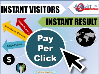 E Virtual Services LLC - PPC Marketing Services India