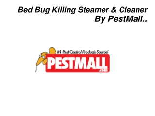 Bed Bug Killing Steamer