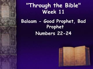 Through the Bible  Week 11