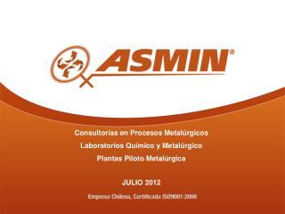 Consultor as en Procesos Metal rgicos Laboratorios Qu mico y Metal rgico Plantas Piloto Metal rgica  JULIO 2012