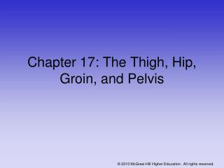 Chapter 17: The Thigh, Hip, Groin, and Pelvis