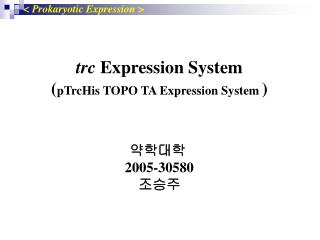 Trc Expression System pTrcHis TOPO TA Expression System      2005-30580