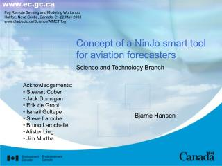 Concept of a NinJo smart tool for aviation forecasters