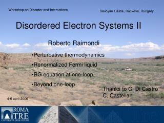 Disordered Electron Systems II