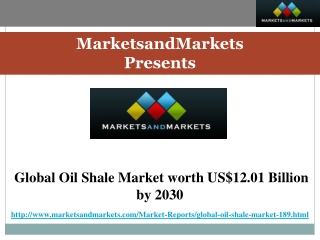 Global Oil Shale Market Forecast by 2030