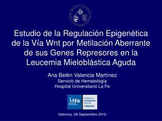 Estudio de la Regulaci n Epigen tica de la V a Wnt por Metilaci n Aberrante de sus Genes Represores en la Leucemia Mielo