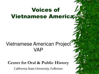 Voices of  Vietnamese America