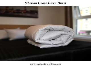 Siberian Goose Down Duvet And pollow
