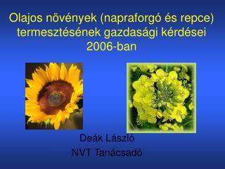 Olajos n v nyek napraforg   s repce termeszt s nek gazdas gi k rd sei 2006-ban