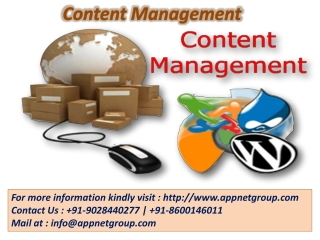 Content Management Nagpur