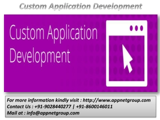 Custom Application Development
