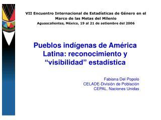 VII Encuentro Internacional de Estad sticas de G nero en el Marco de las Metas del Milenio Aguascalientes, M xico, 19 al