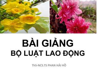 B I GING  B LUT LAO  NG
