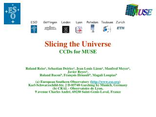 Slicing the Universe CCDs for MUSE