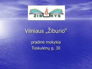 Vilniaus   iburio