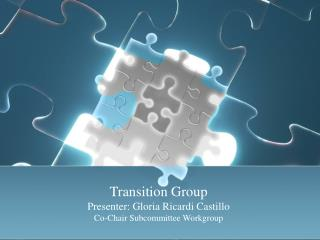 Transition Group Presenter: Gloria Ricardi Castillo Co-Chair Subcommittee Workgroup