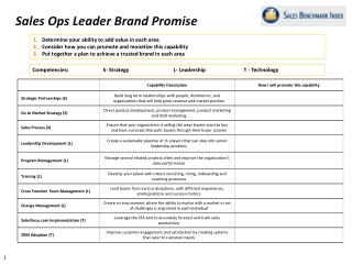 Sales Ops Leader Brand Promise