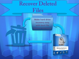 File Restore Software