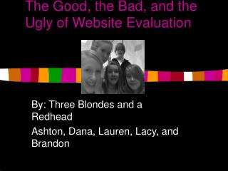 The Good, the Bad, and the Ugly of Website Evaluation
